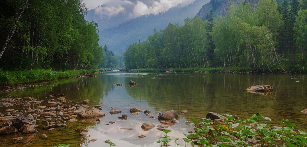 Река Кумир. Алтайский край.