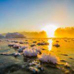Утро на реке Иня