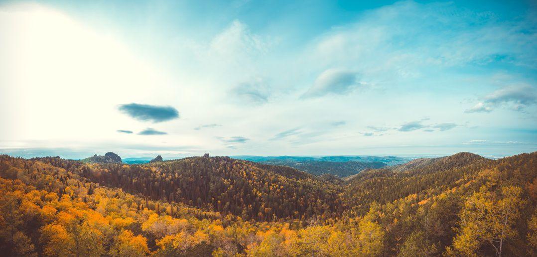 Осенний лес с Красноярских столбов.