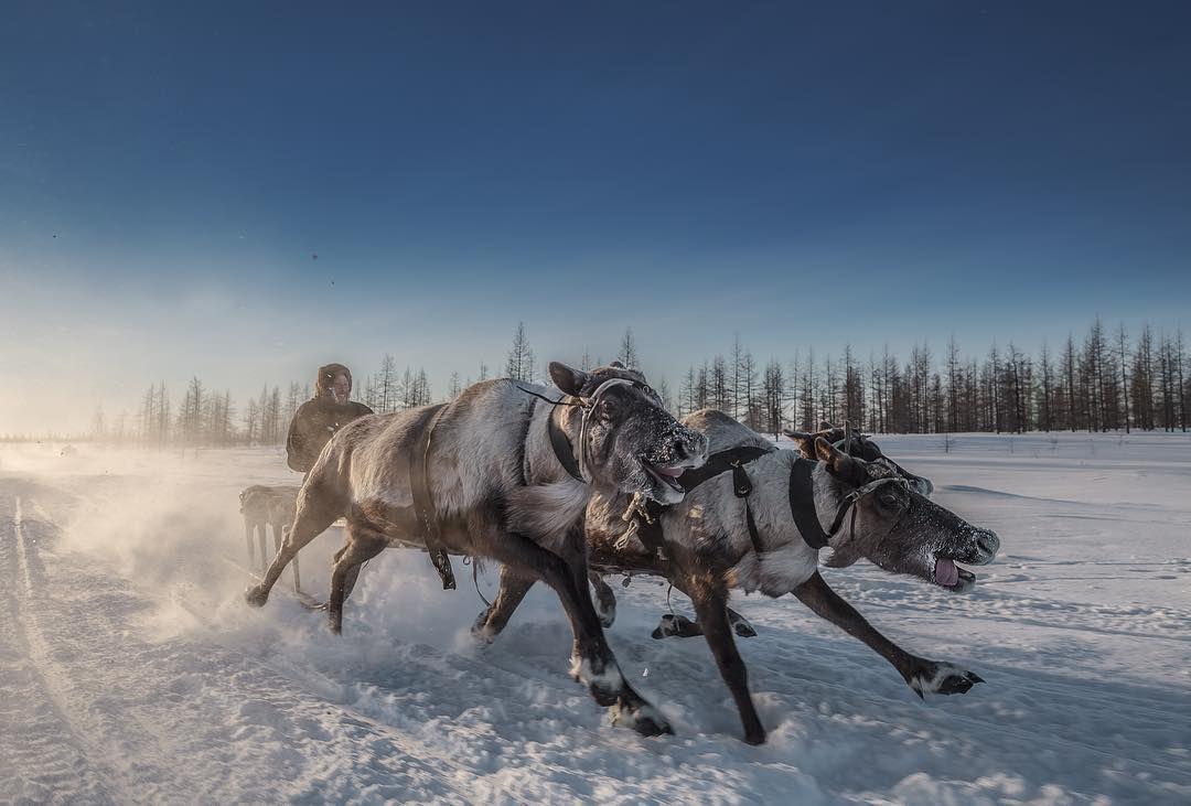 Ямал, ЯНАО, Фото
