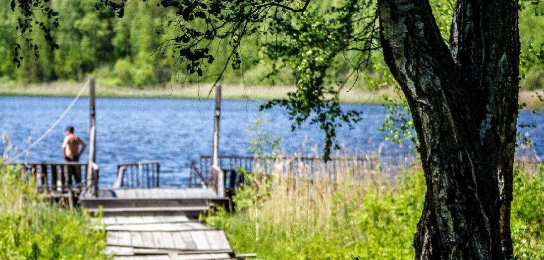 Линево, Омская область, Фото