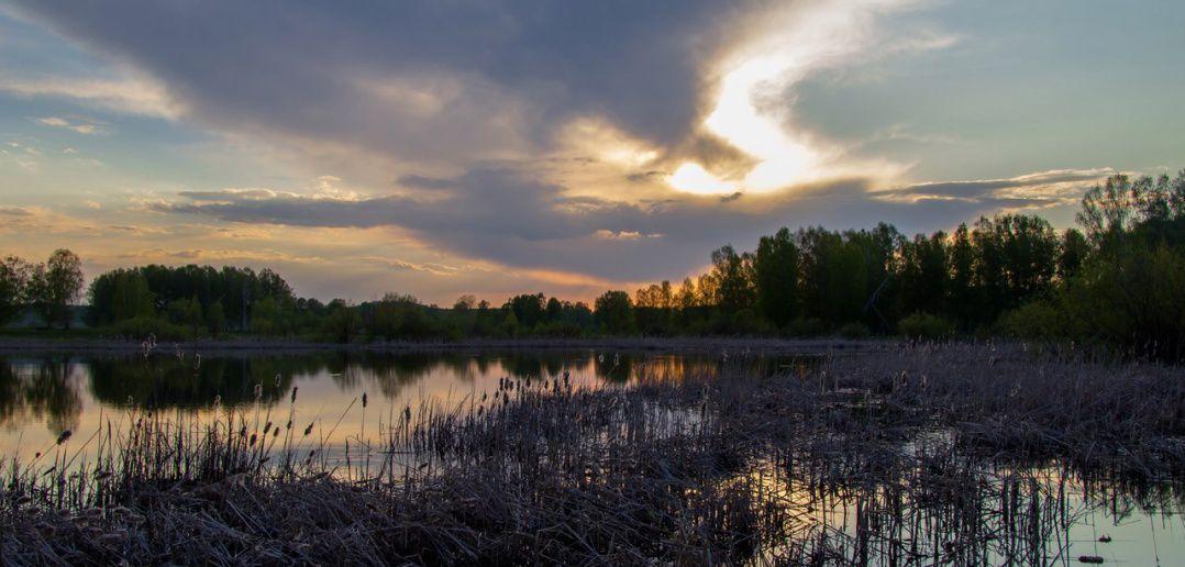 Новосибирская область, Тогучинский район, фото