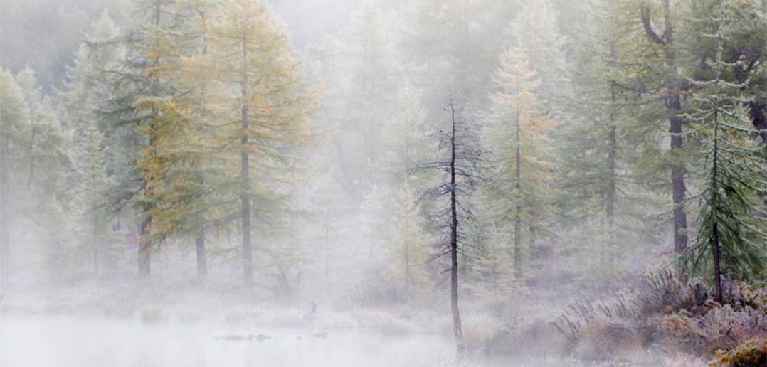 Озеро Ильчир, Бурятия,Фото