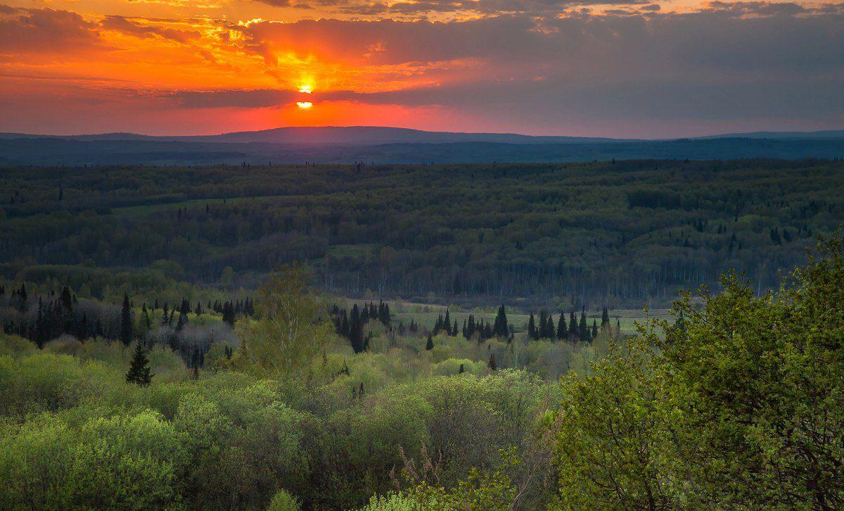 Салаирский кряж, Алтай, фото