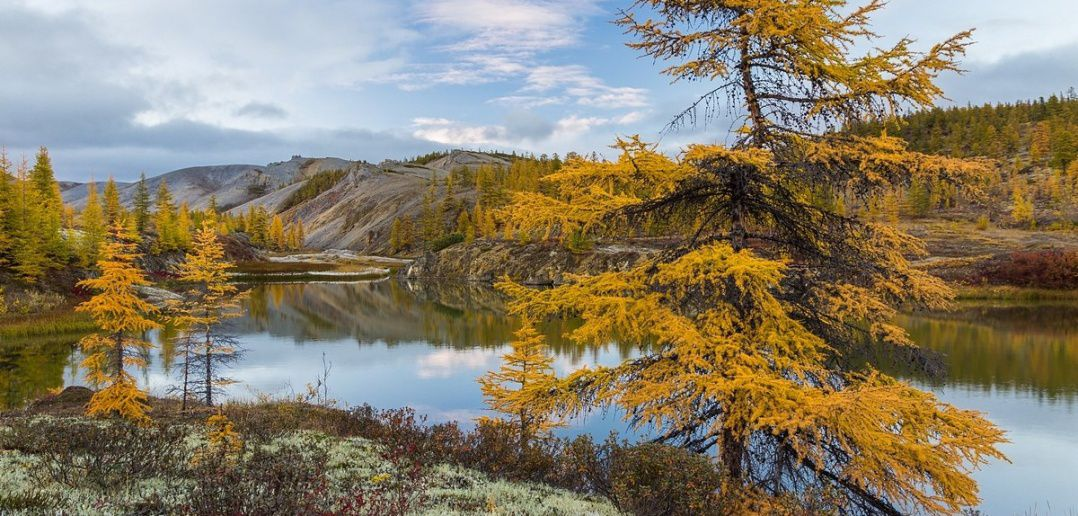 Индигирка, Якутия, Фото