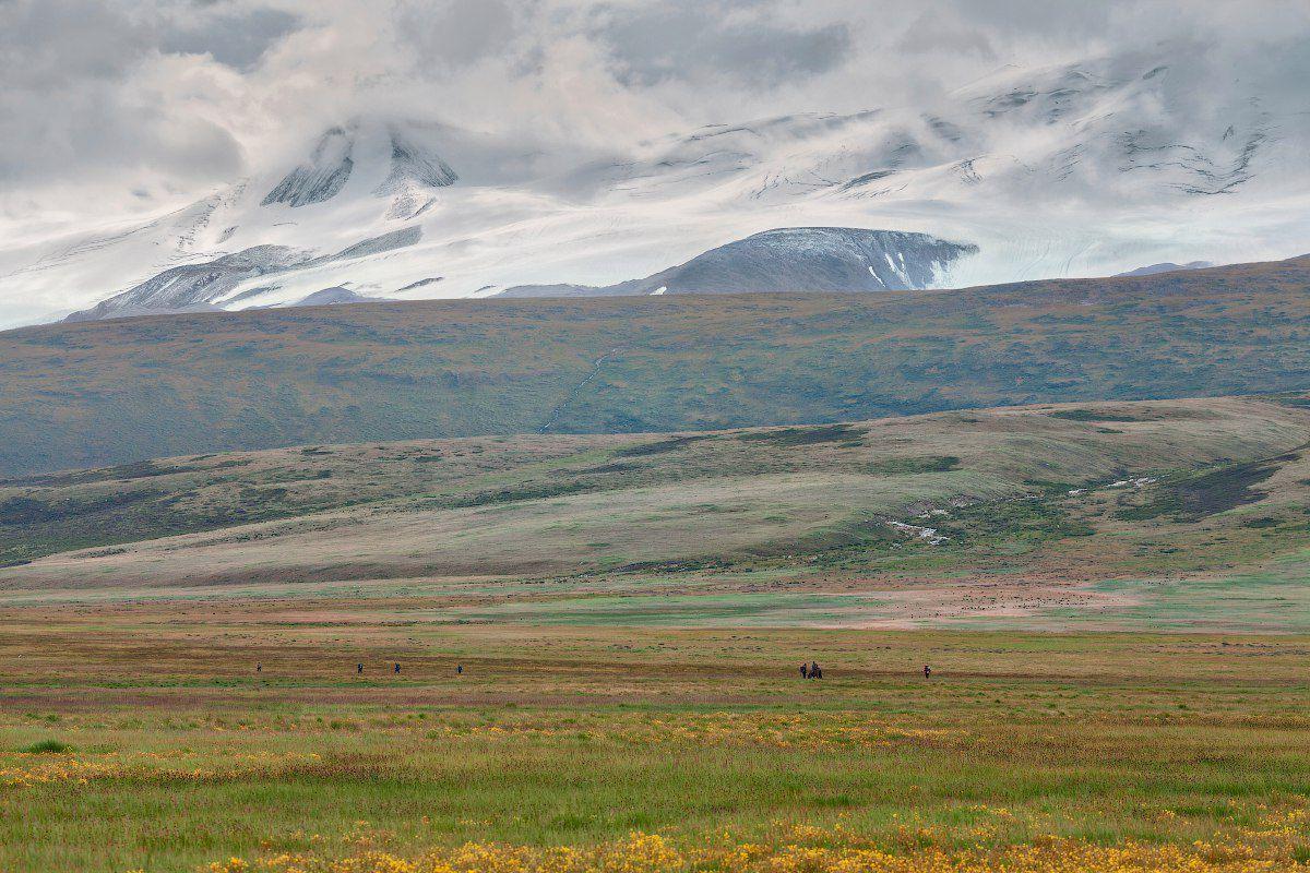 Плато Укок, Алтай, Фото