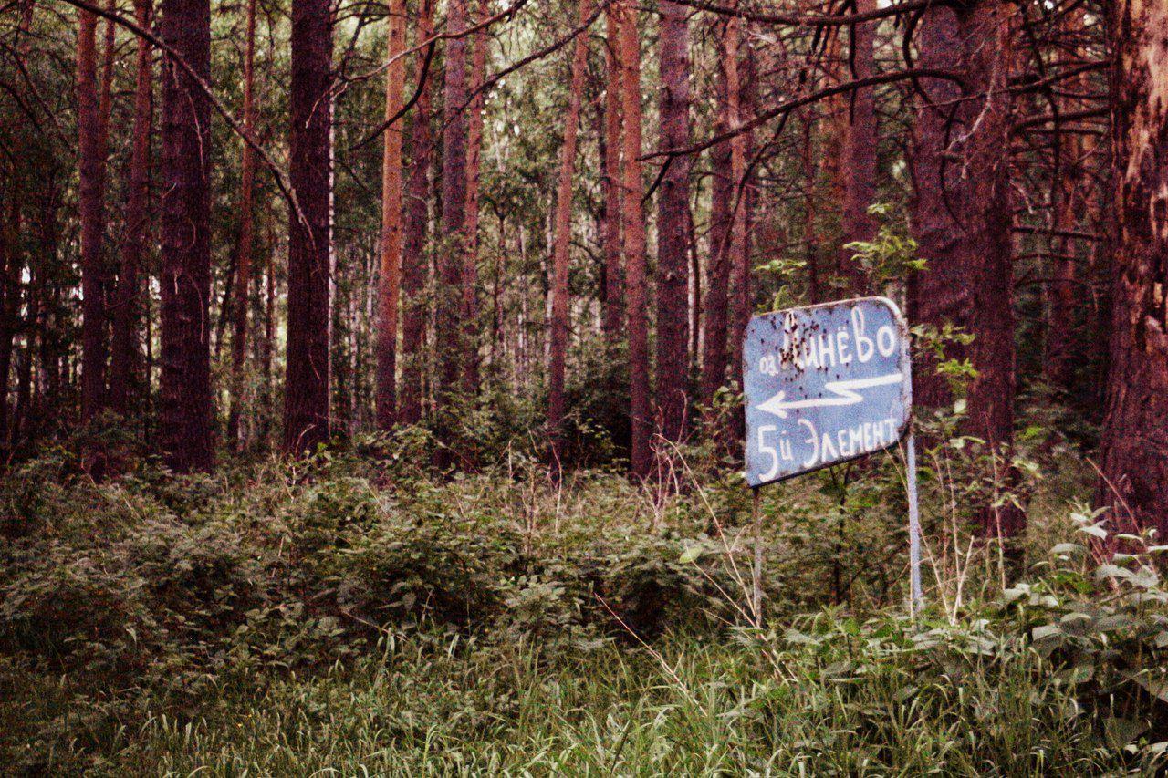 Омская область, Линево, фото