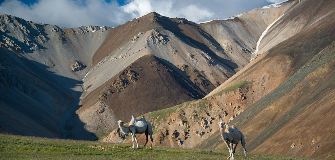 алтай, Курайский хребет, Фото