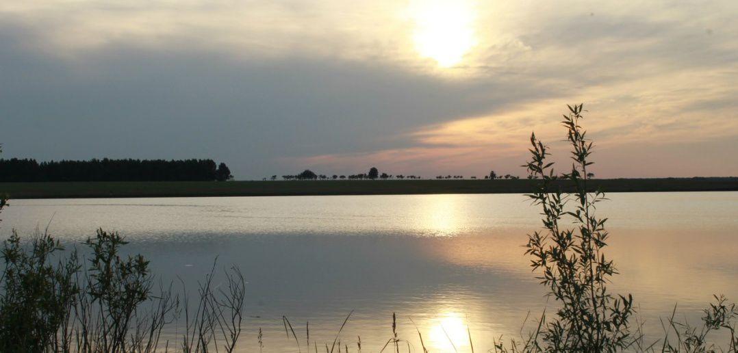 Закат, Кулундинская степь, Родинский район, фото