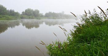 Иня, Новосибирск, фото