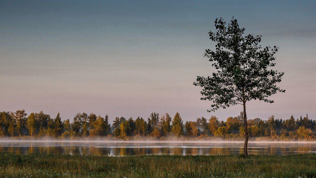 Черлакский тракт, Омская область, фото