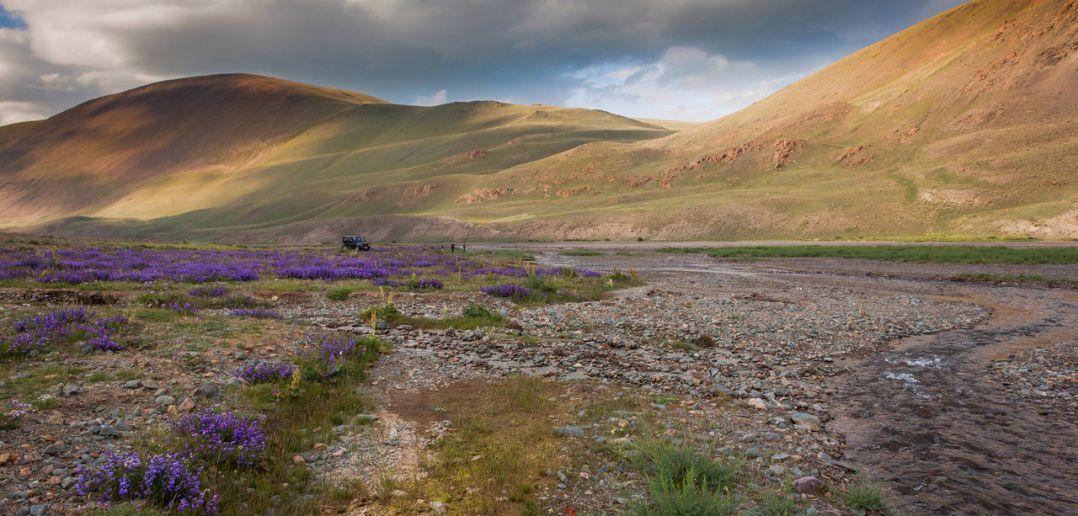 Алтай, Сайлюгем, Фото