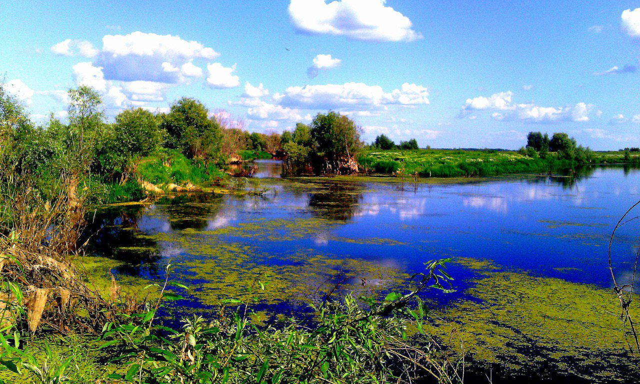 Аркарка, Тара, Омская область, Фото