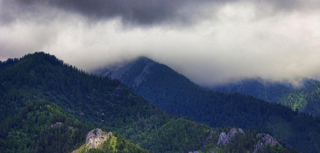 Восточные Саяны, Аршан, Бурятия, Фото