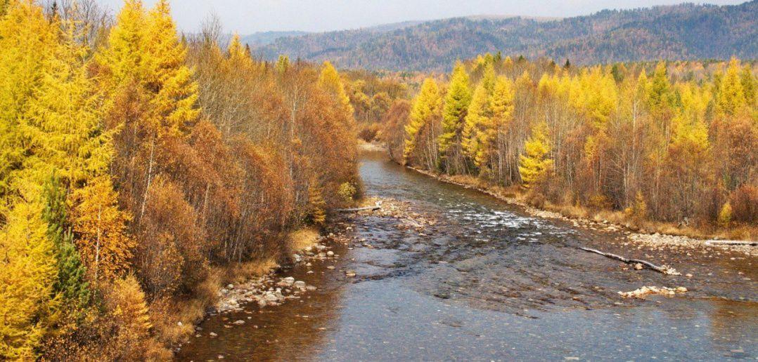 Осень, тайга