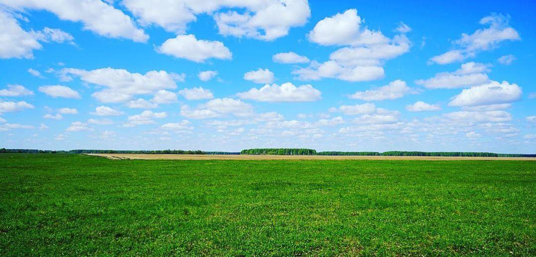 Таврическое, Омская область, Фото