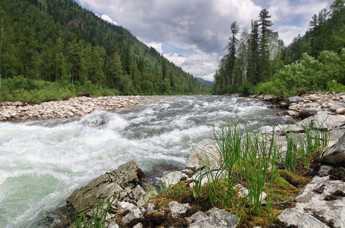 Река Казыр, Фото