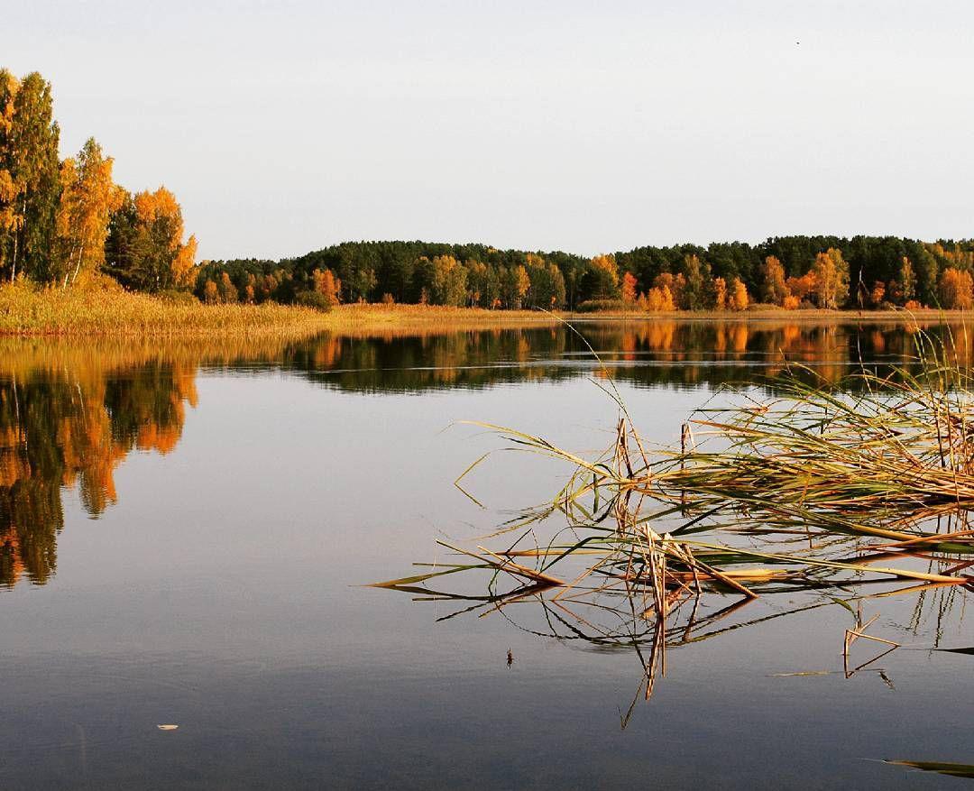 Сибирь, Фото