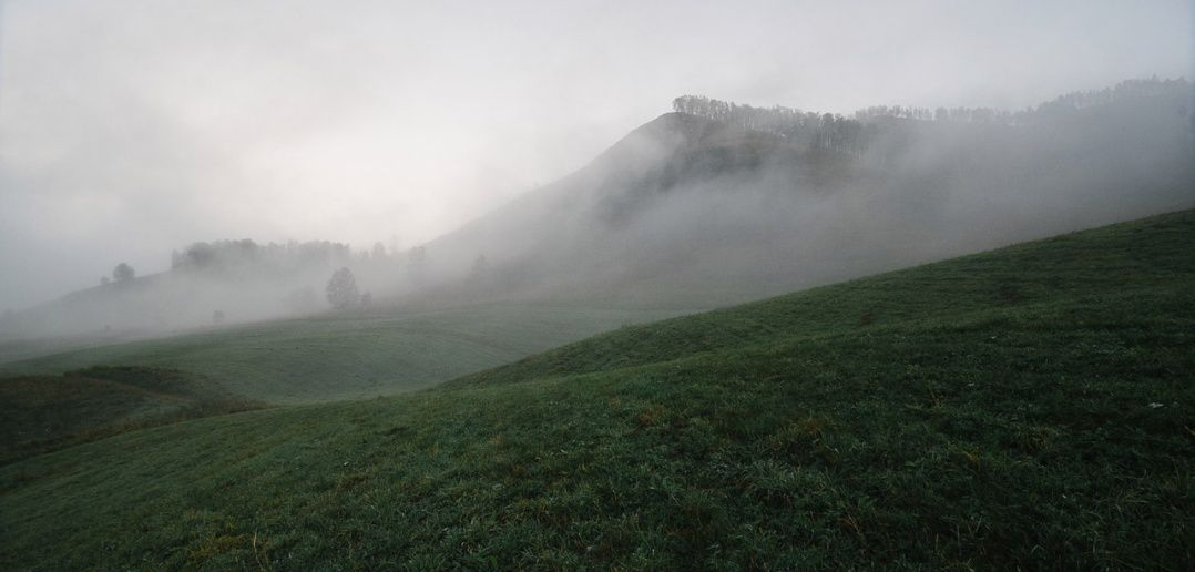 туман, Чуйский Тракт, фото