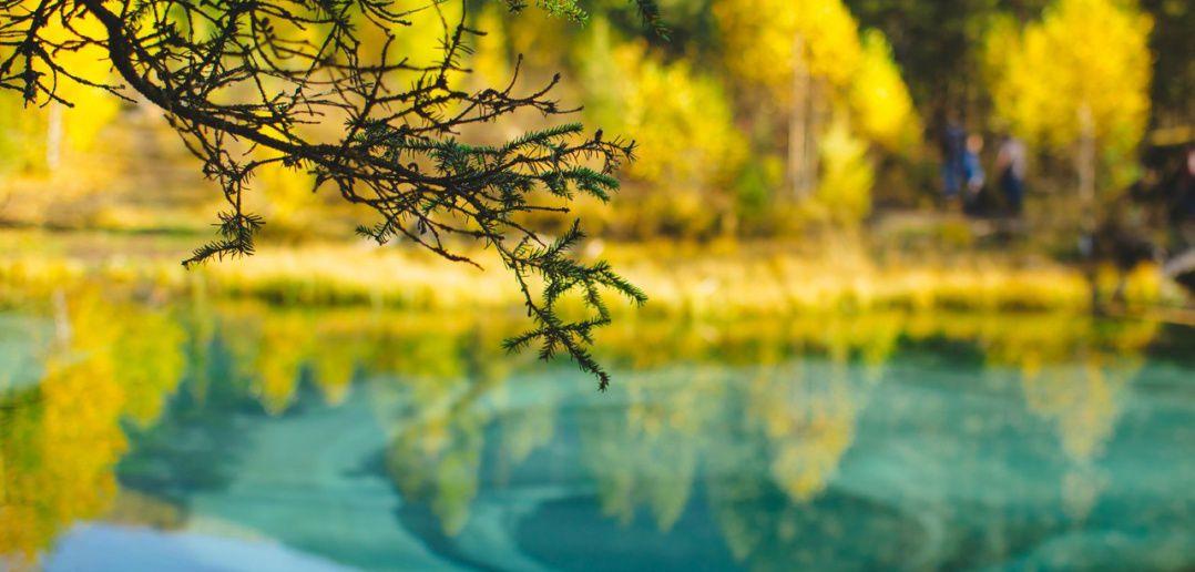 Гейзерово озеро, Алтай, Фото