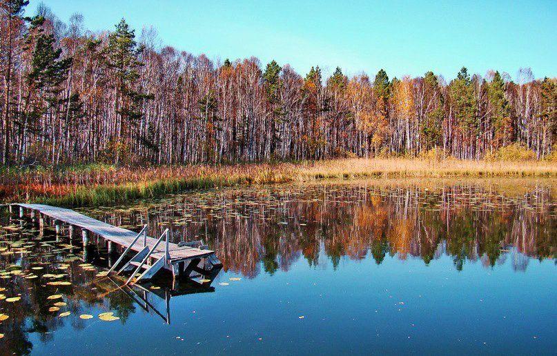 Омская область, Линёво, фото