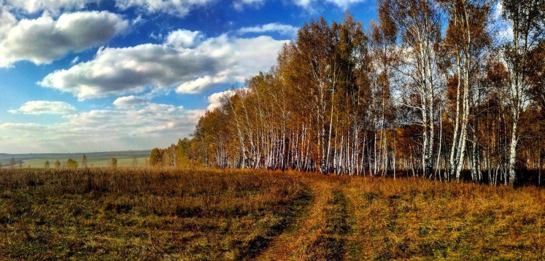 Прокопьевский район, Кемеровская область, фото