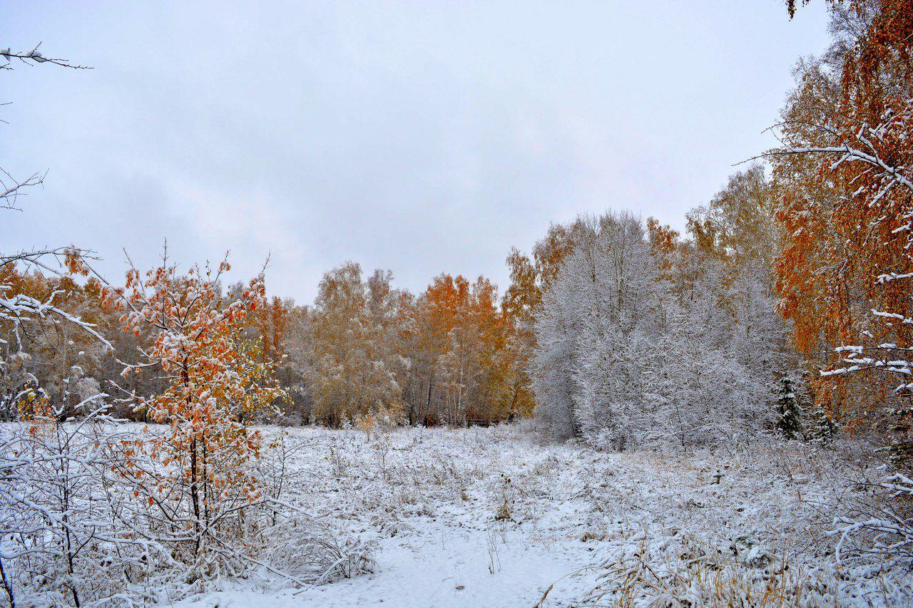Омская область, Усть-Заостровка, фото