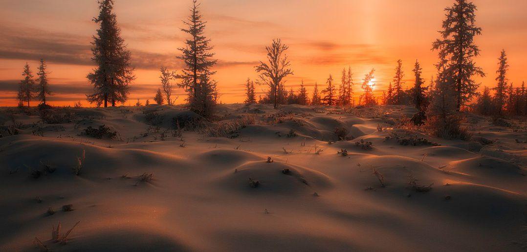 Закат, тундра, ЯНАО, фото