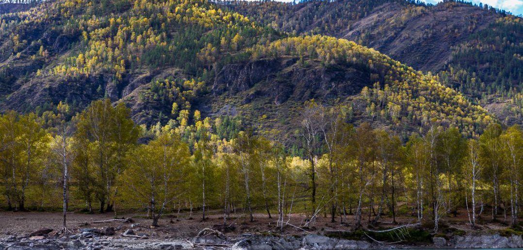 Горный Алтай, Катунь, фото