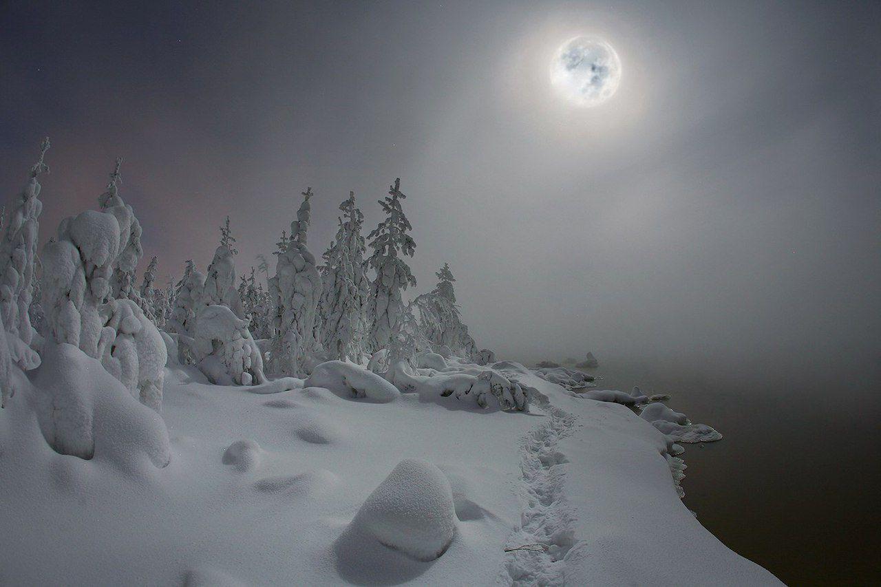 Лунная ночь, Ханты-Мансийский автономный округ, Западная Сибирь, фото