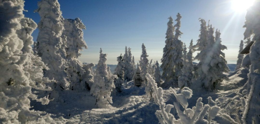 Шерегеш, гора Зелёная, фото