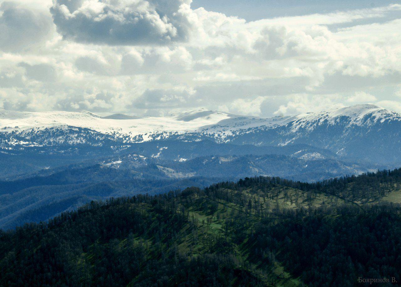 Алтай, хребет Иолго, Альбаган, фото