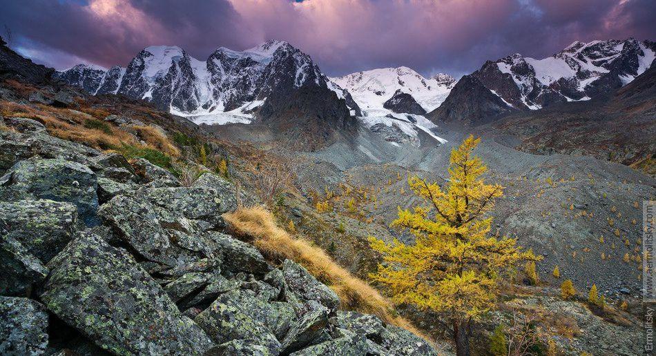 Республика Алтай, Северо-Чуйский хребет, Фото