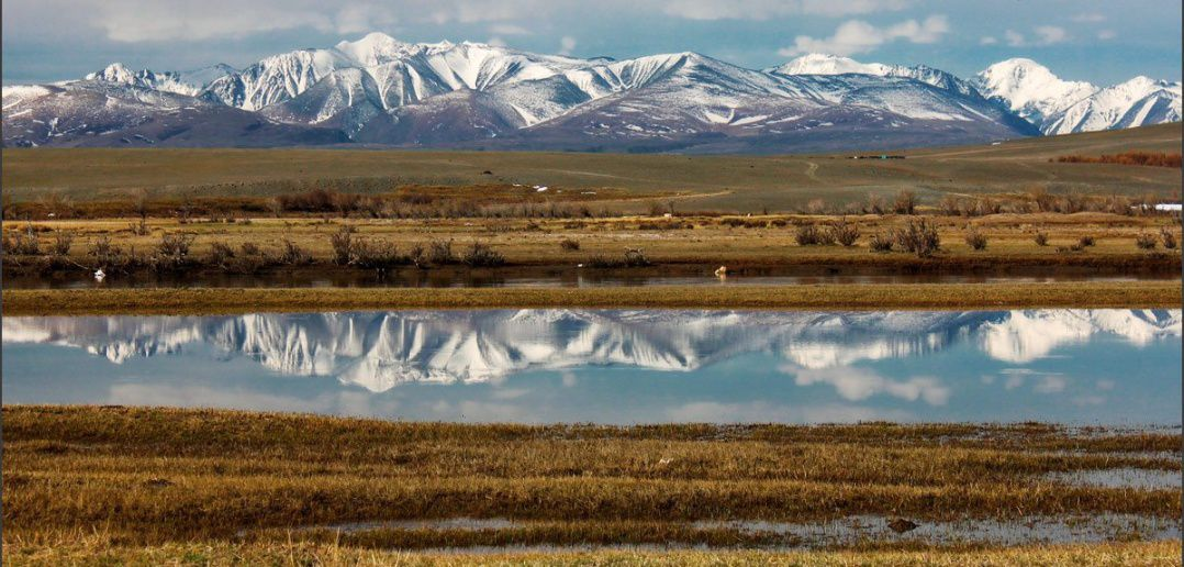 Чуйская степь, Алтай, Чуя, Кош-Агачском районе, Республика Алтай