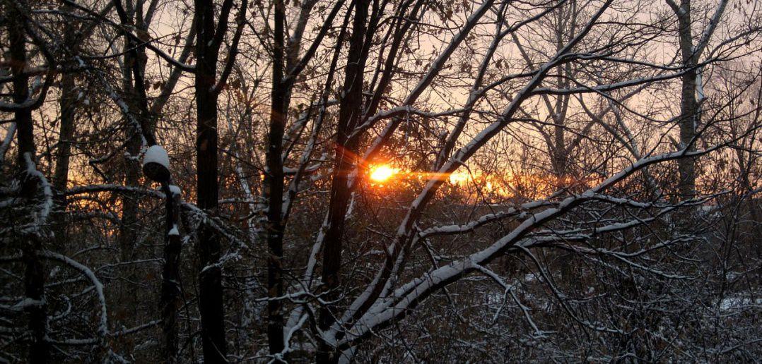рассвет, Омск, фото