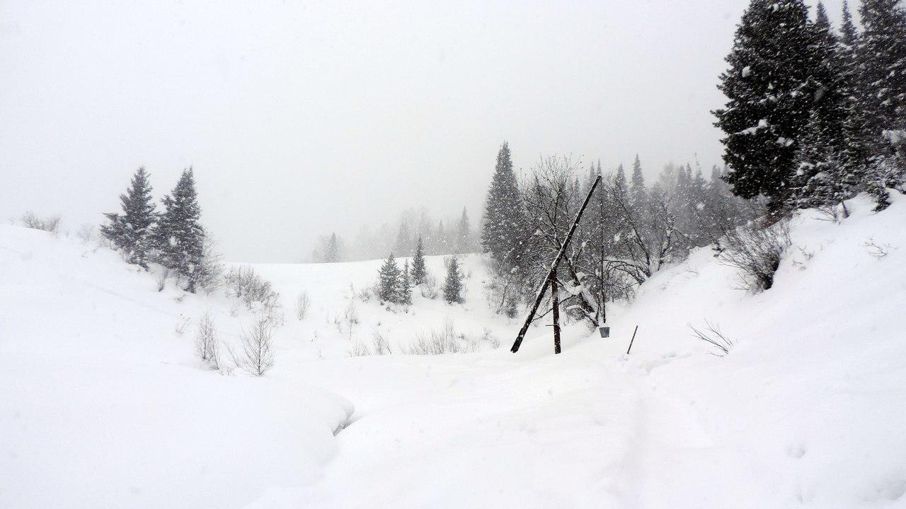 Кемеровская область, пос. Камешок, фото