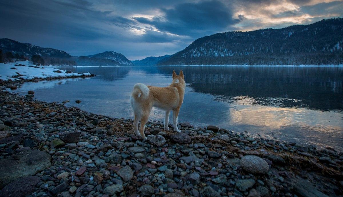 Телецкое озеро, Республика Алтай, Фото