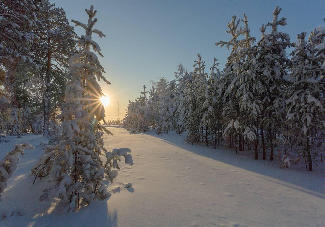 Табагинский мыс, Якутия, Фото