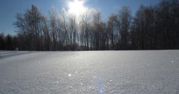 Омская область, Любинский район, фото