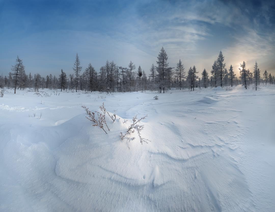 картинки к суровой зиме тундры люцифер