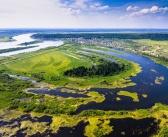 Памятник природы «Коларовские водно-болотные угодья»