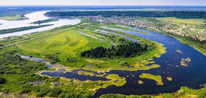 Природа Томской области