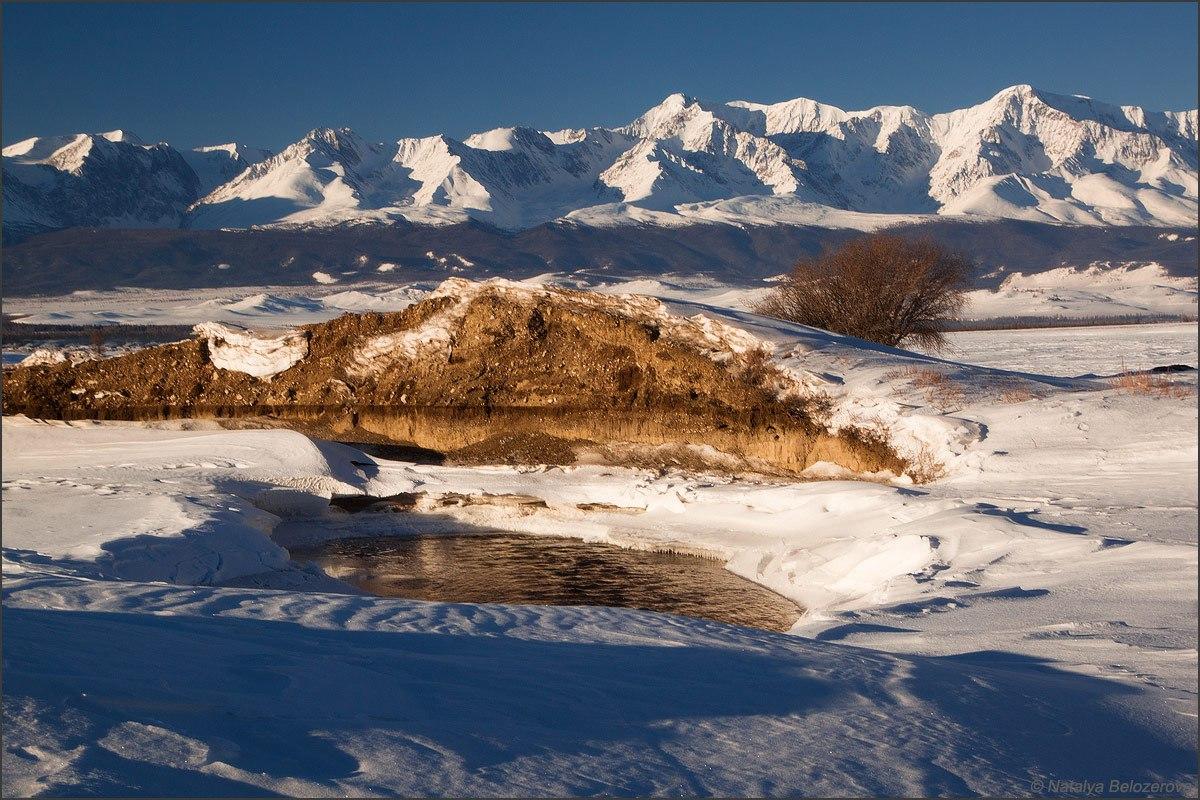 Курайской степи, Горный Алтай, Фото