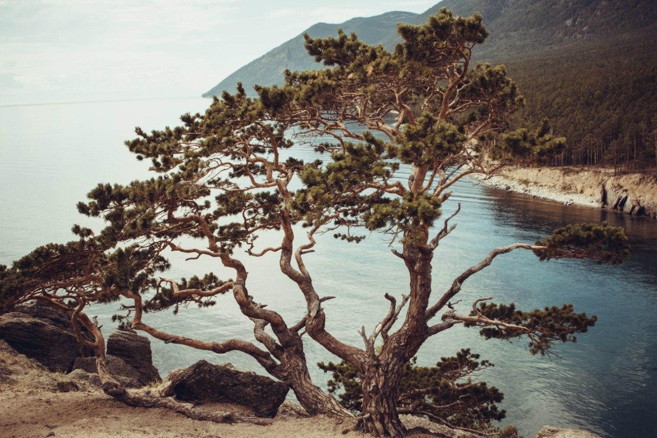 Байкал, бухта Песчаная, Фото