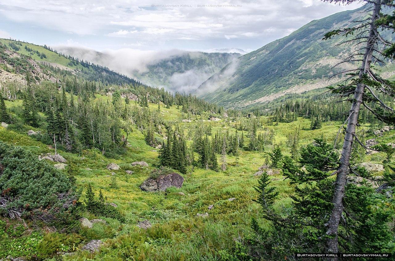 Хамар-Дабан, гора Мамай, Республика Бурятия, Фото