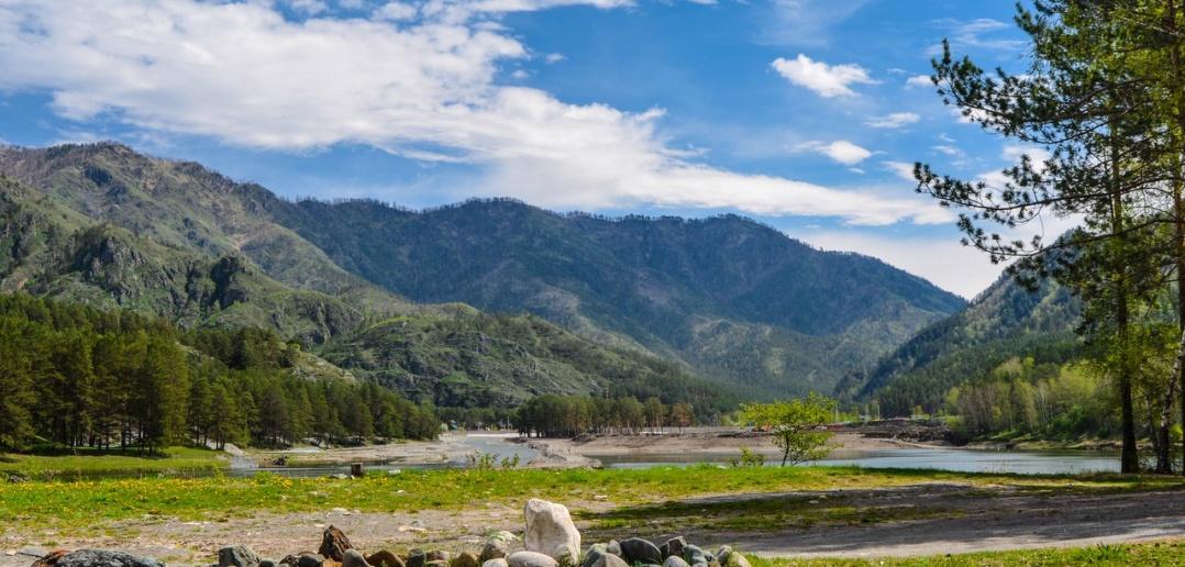 Чемал. фото