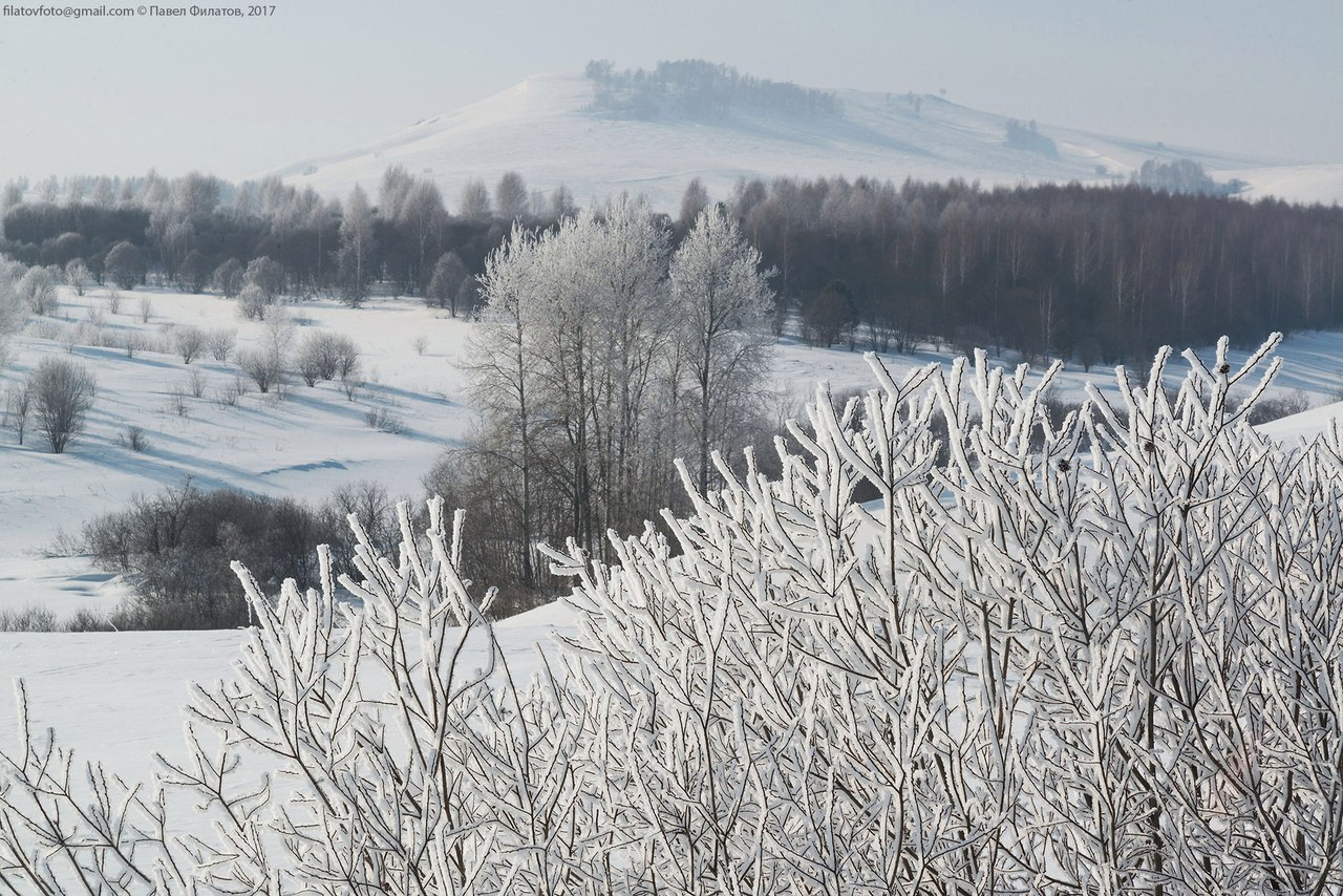Красногорский район,Алтайский край, Талый,Фото