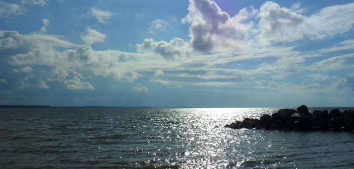 Обское море, его «ответвление» — речка,плавно перетекающая в реку Зеленая г.Бердск   фото: Марина Гор