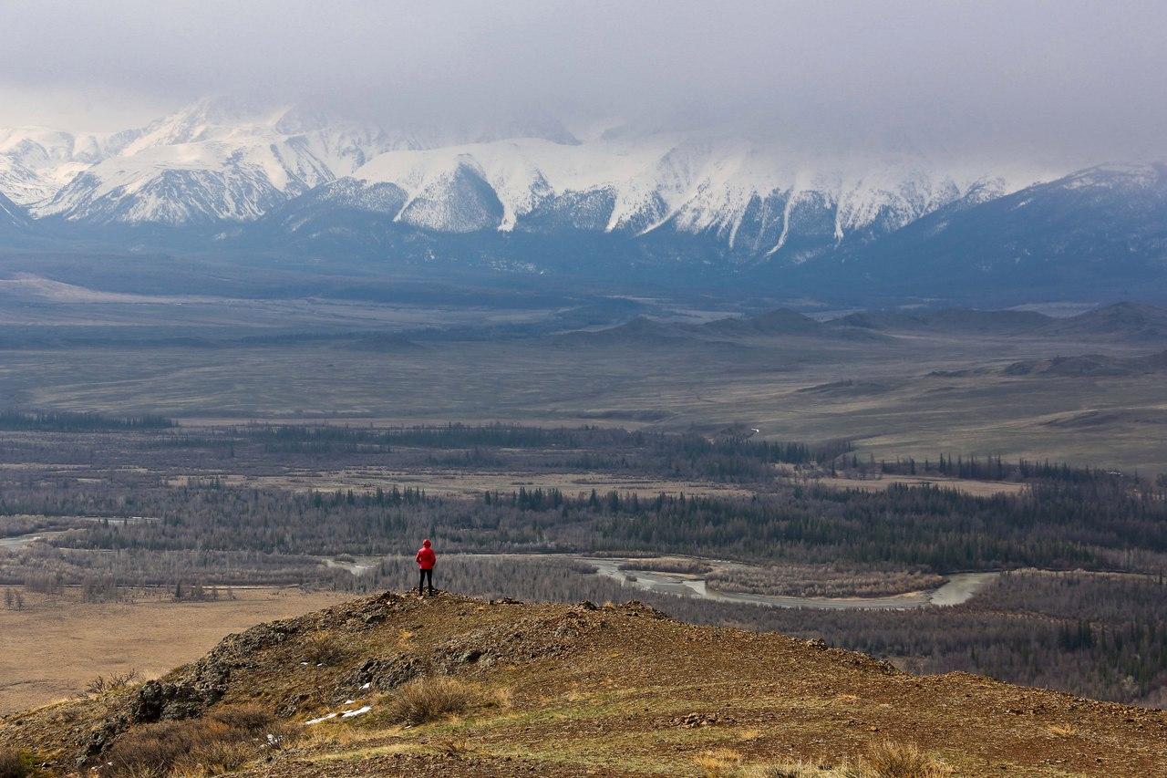Алтай, Курайской степи, Фото