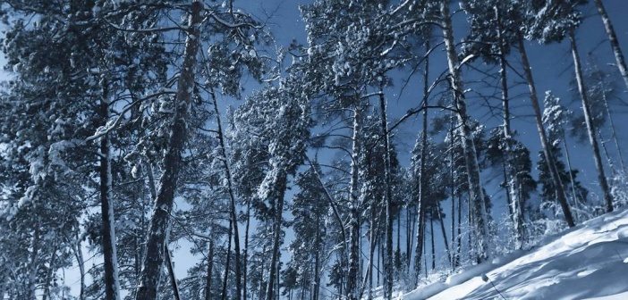 Пейзажи Якутии Фото: instagram Олег С